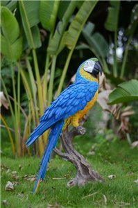 Large Macaw Blue and Yellow, 16 and 5 Inch x 10 and 5 Inch x 27 and 5 Inch